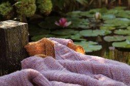 a little book of shawls 3